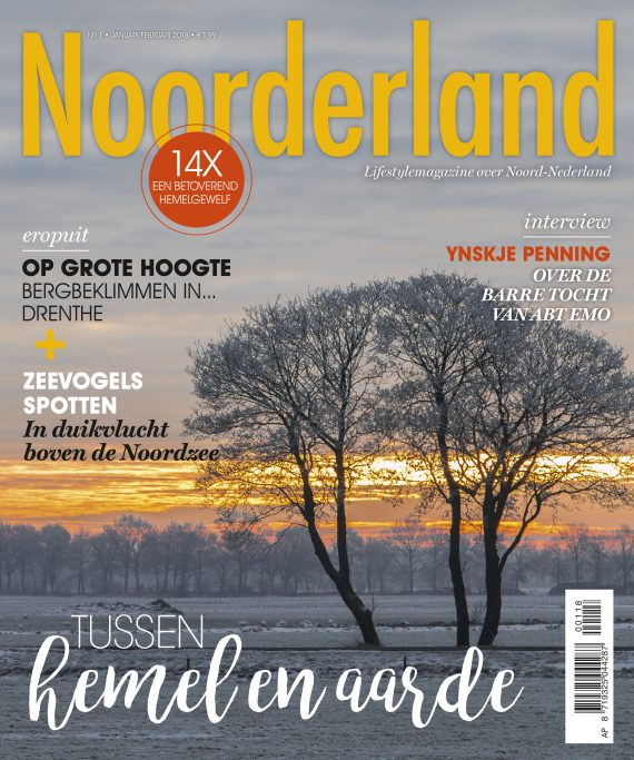 p01 cover_NL201801_v4.indd